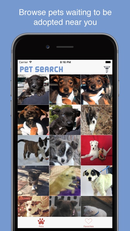 Pet Search - Adopt a Pet Near You