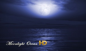 Moonlight Ocean HD
