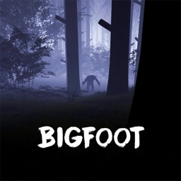 THE BIGFOOT FINDERS
