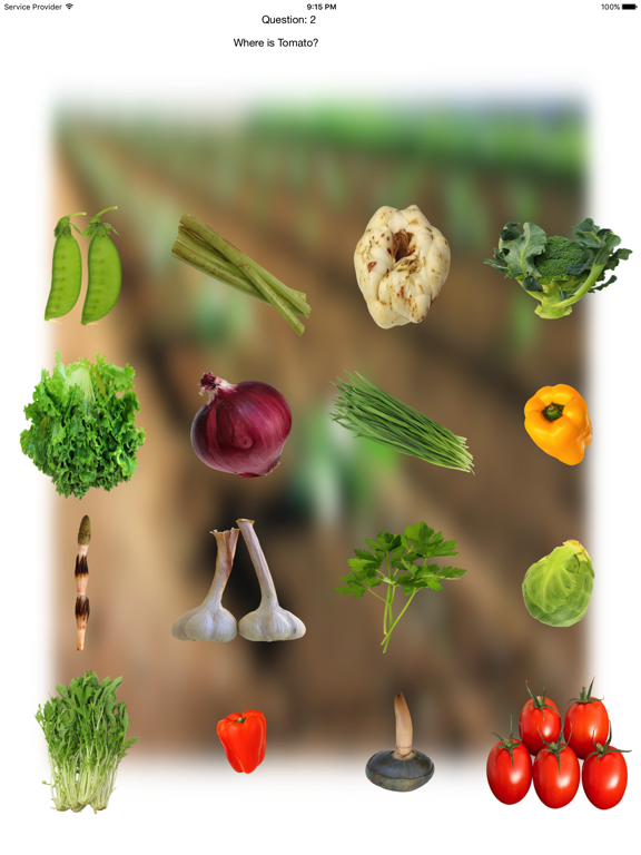 Vegetables Touch ~ simple trivia game ~ screenshot 8
