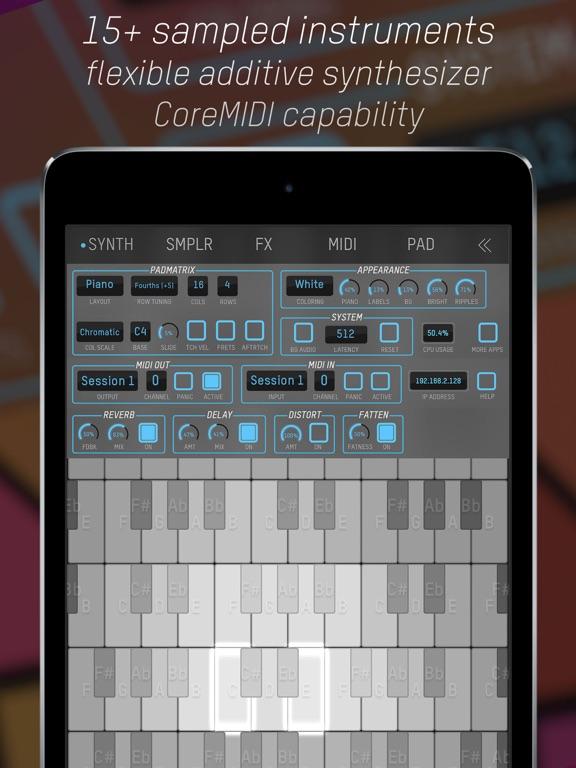 expressionPad MIDI/Synth screenshot 6