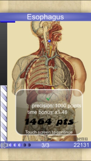 Speed Anatomy Lite (Quiz) on the App Store