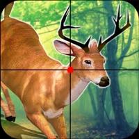 Codes for Ultimate Big Buck Deer Hunt Simulator Challenge Pr Hack