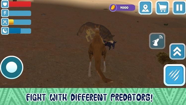 Kangaroo Australian Wild Life Simulator 3D