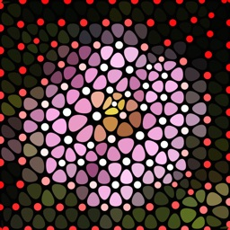 TriMeshImager - Triangular Mesh Art Generator