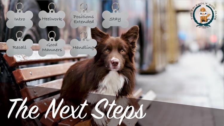 The Friendly Dog Club: The Next Steps
