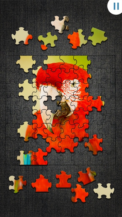 Jigty Jigsaw Puzzles screenshot-4