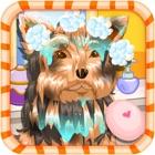 ベビー犬のケア icon