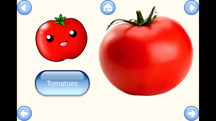 Vegetable Words Baby Learning English Flash Cards