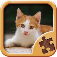 Codes for Cute Kitty Jigsaw Puzzle Games - Kitten Puzzles Hack