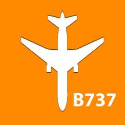 Boeing B737 NG Electrical Diagram