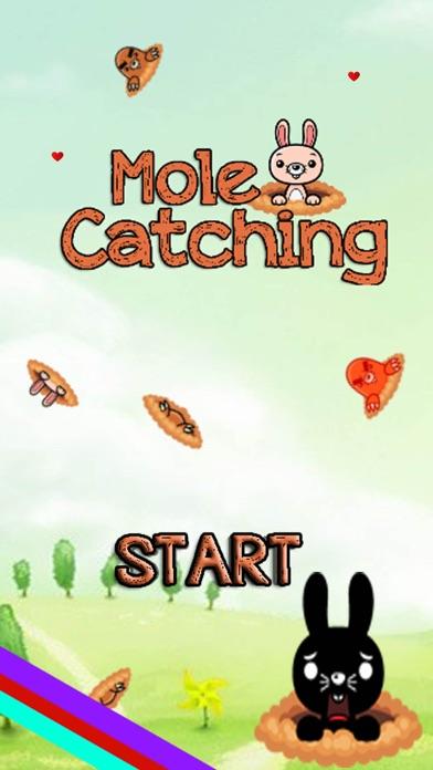 Mole Catching Screenshot
