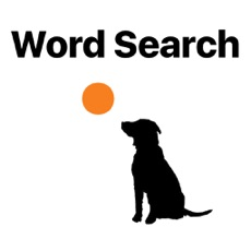 Activities of Word Search Round
