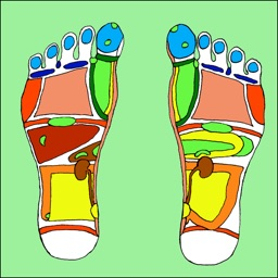 Treat Your Feet - Reflexology