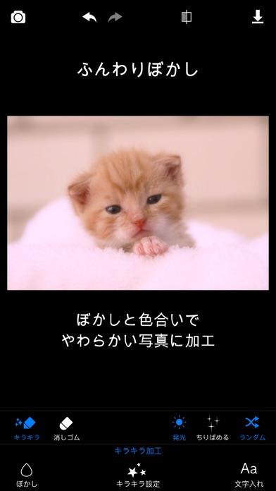 キラキラ加工 Lite - キラキラ&ぼかしで写真加工スクリーンショット3