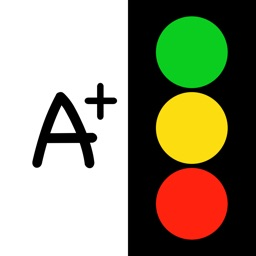 Traffic Light Feedback