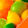 Vitamine & Mineralien
