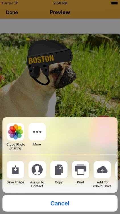 Boston Hockey Stickers & Emojis screenshot-4
