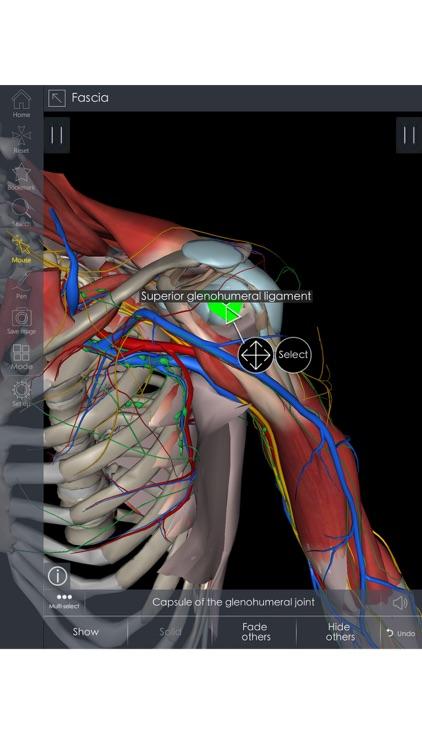 Medsee - 3D Detailed Anatomy screenshot-3