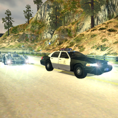 Activities of Need For Police Car Racing 3D