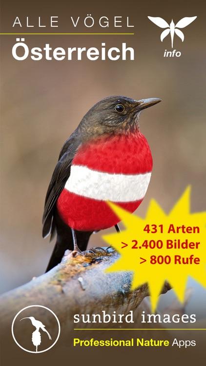 Alle Vögel Österreich - Bestimmen, Identifizieren