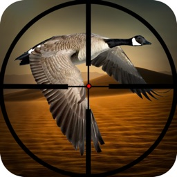 Wild Bird Hunting: Silent Sniper Shooting