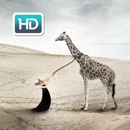 Funny & Creative Wallpapers & Backgrounds Themes