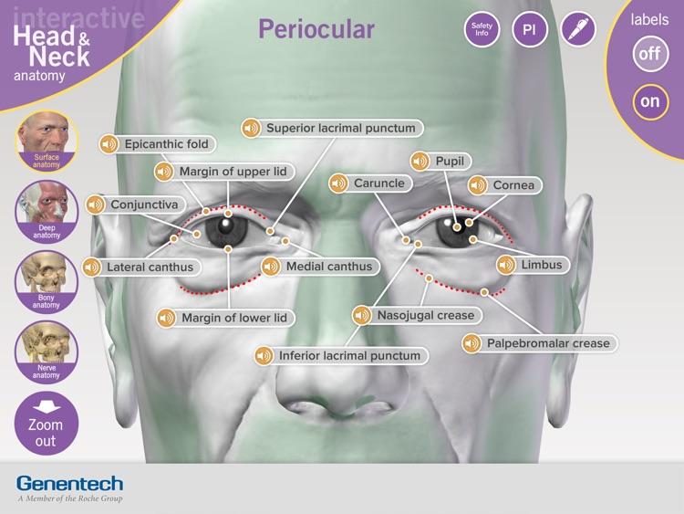 3D Facial Anatomy Tool screenshot-3