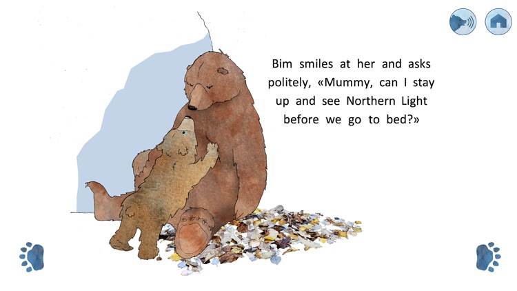 Bim's Northern Light Dream
