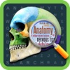 Anatomy Word Search- Medical Terms Game