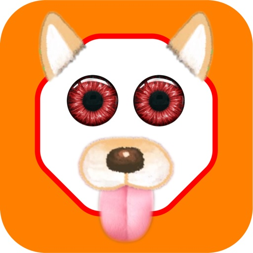 Funny Face - Filters Pic Swap Effects Photo Editor iOS App