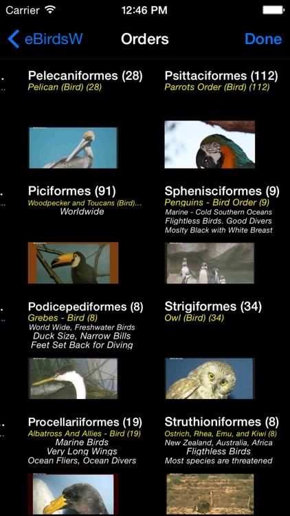 Birds of the World - eBirdsW - A Bird App
