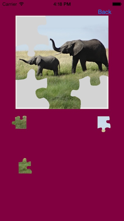 Elephants Jigsaw Puzzles with Photo Puzzle Maker screenshot-3