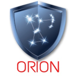 Orion Damage Assessment