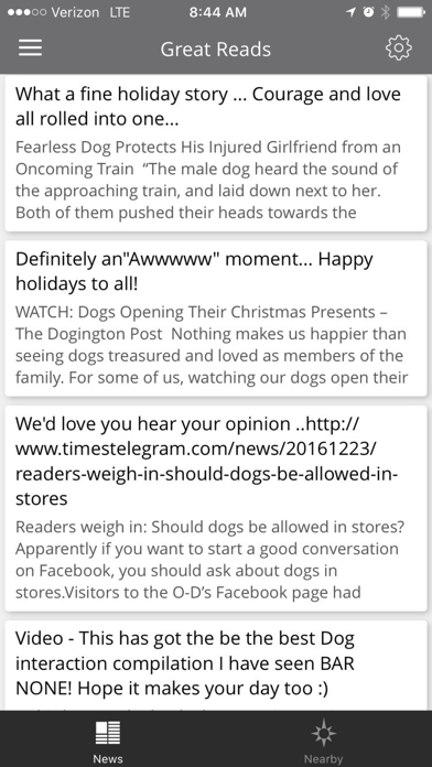点击获取Dingo App