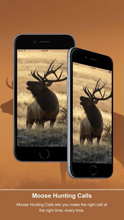 Elk Calls: Hunting Calls