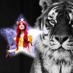 Tiger Photo Frame - Best Photo Frame Editor