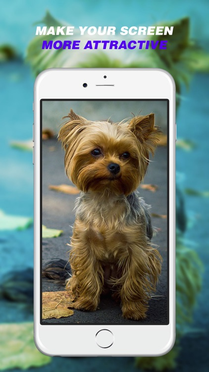 Dog Wallpapers - Home Screen Themes & Backgrounds screenshot-4