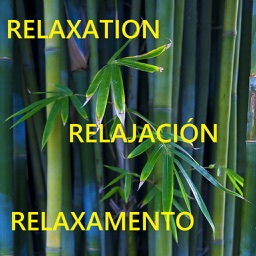 Relaxation Techniques - Calm your mind