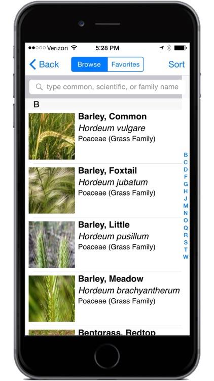 Montana Grasses screenshot-3