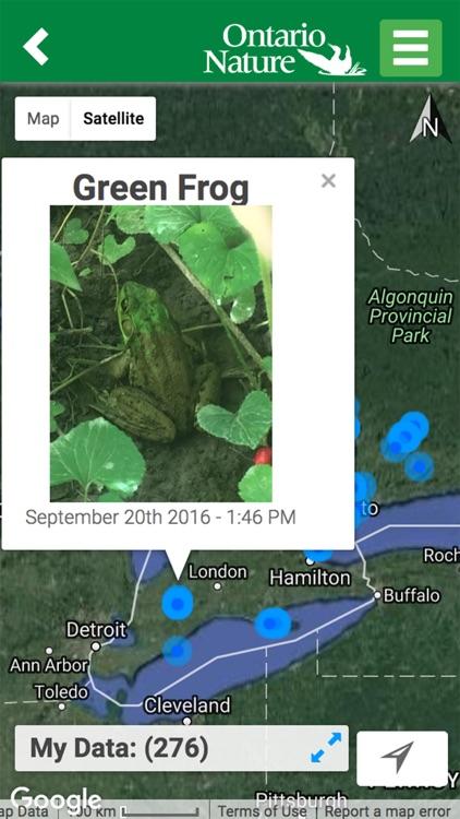 Ontario Reptile and Amphibian Atlas screenshot-4