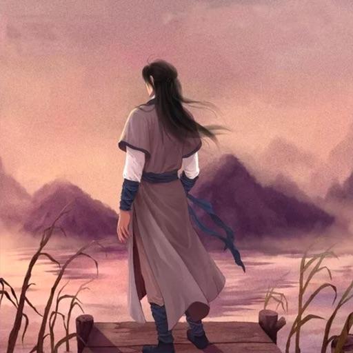 杨家将-刘兰芳评书