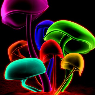 Neon Wallpapers Arts Pictures HD