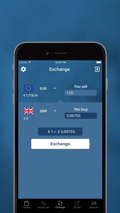 GLOBCOIN screenshot-2