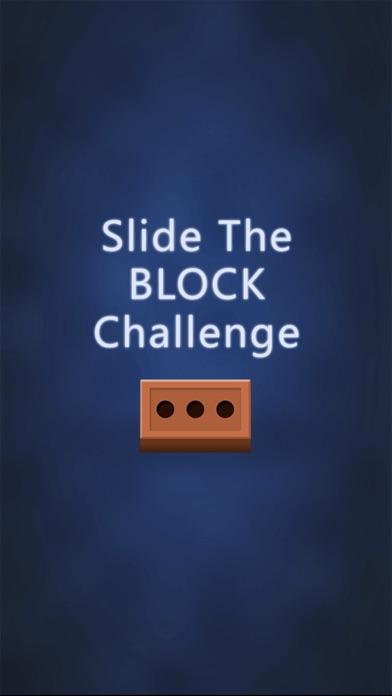 Slide the Block Puzzle Pro - brain teaser riddle screenshot 1