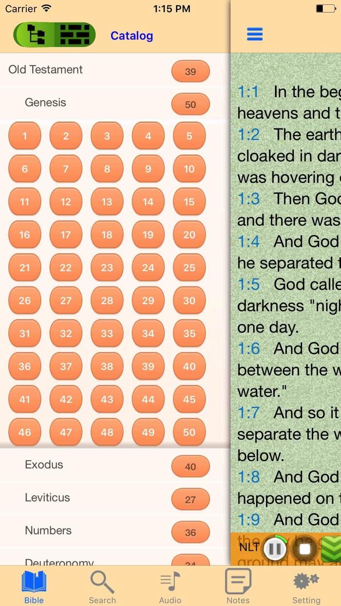 New Living Translation NLT Audio Bible offline Screenshot