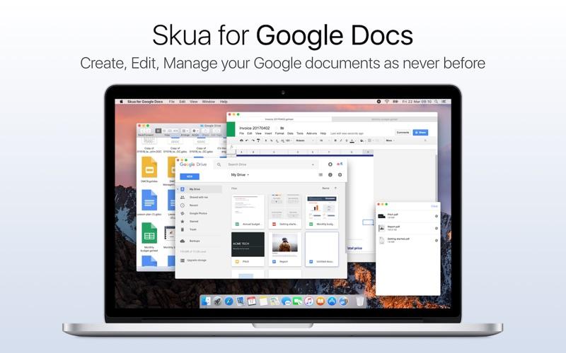 Skua for Google Docs på PC