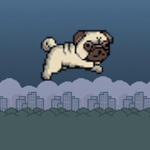 Pug Runner