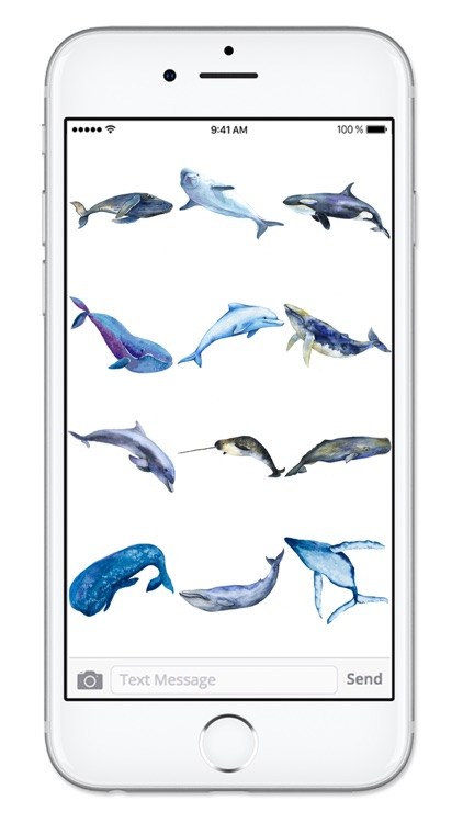 Watercolor Whales and Dolphins Ocean Sticker Pack screenshot-3