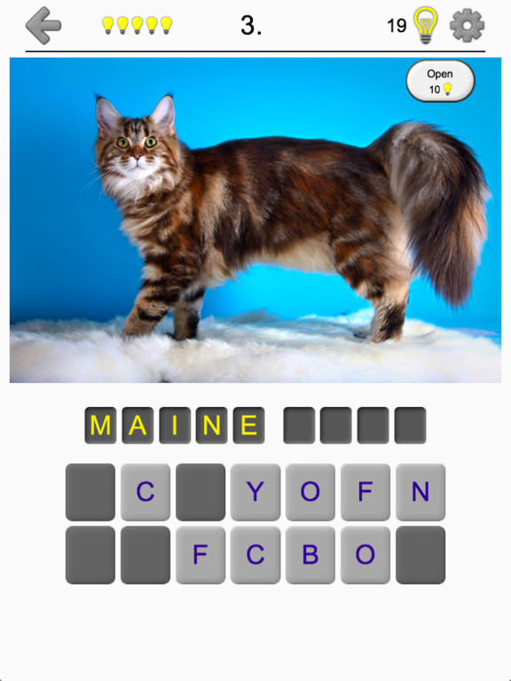 Cats Quiz - Guess Photos of All Popular Cat Breeds screenshot 6